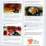 Proyecto de Recetas Caseras Misrecetascaseras.com